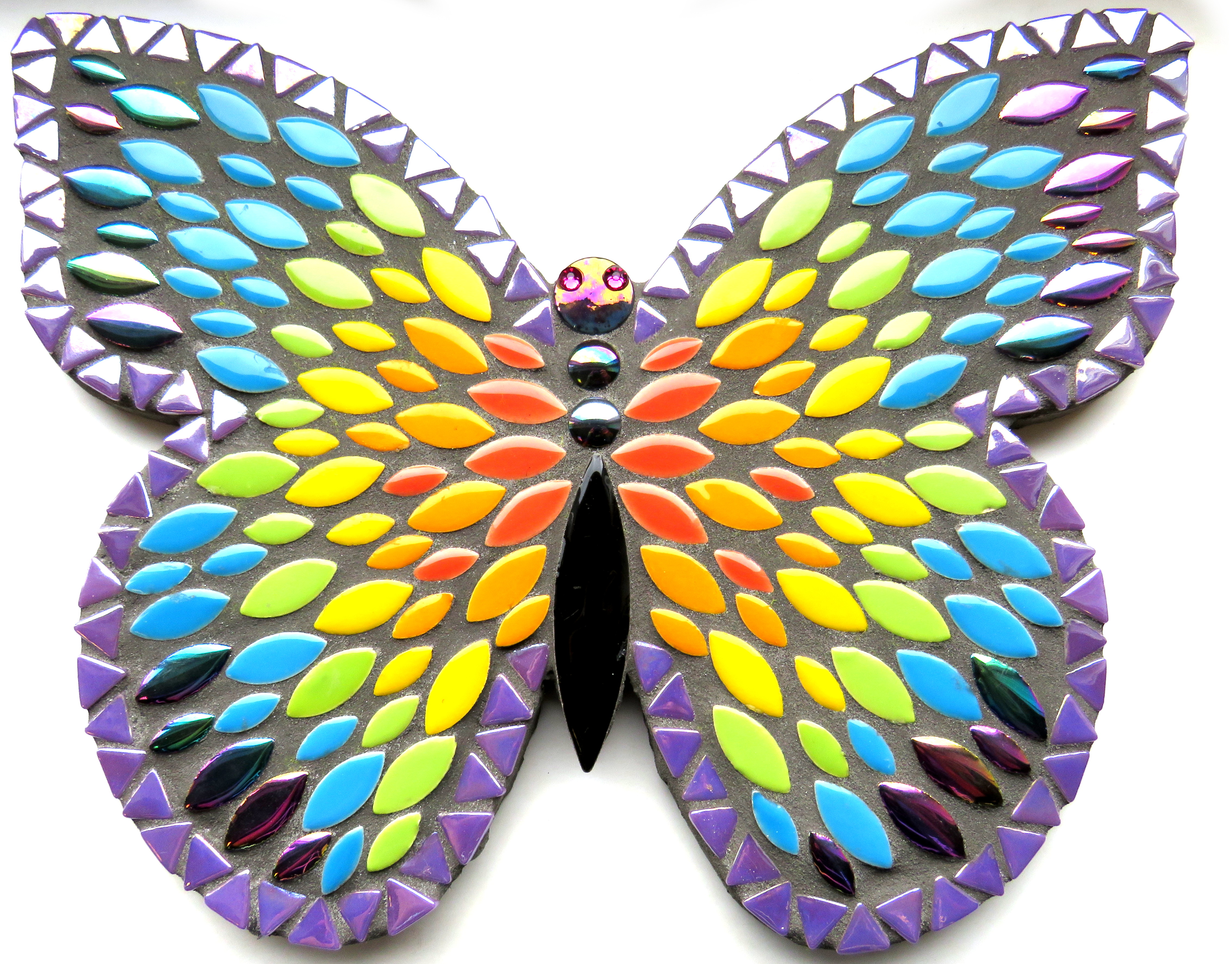 Sommerfugl regnbue